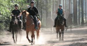 ratsastusjousiammunta_leiri_2013